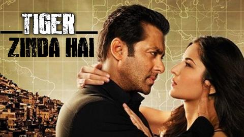 Tiger Zinda Hai movie cast, Tiger Zinda Hai box office collection, Tiger Zinda Hai worldwide box office, Tiger Zinda Hai video,